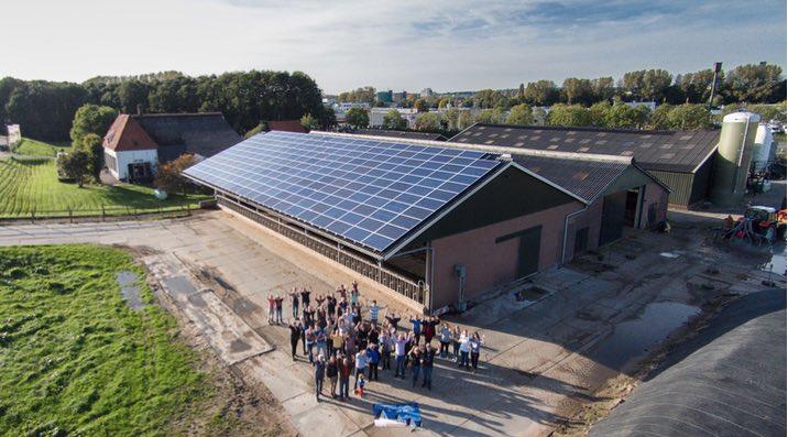 Rijn en IJssel energiecoöperatie viert de oprichting bij het zonnedak op zuivelboerderij IJsseloord
