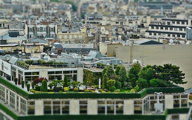 Stadstuin op een dak